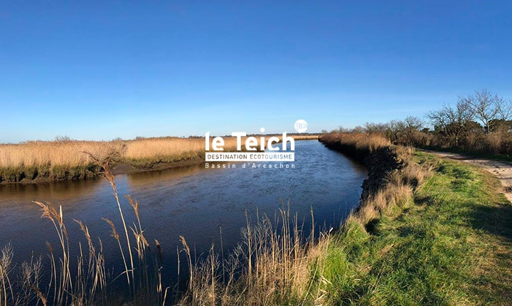 Atelier nature au Lescarret - Agenda Nature du Teich