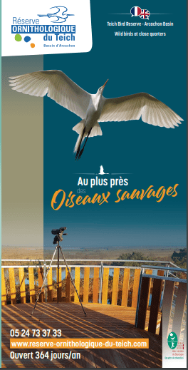 Réserve Ornithologique du Teich 2021 •