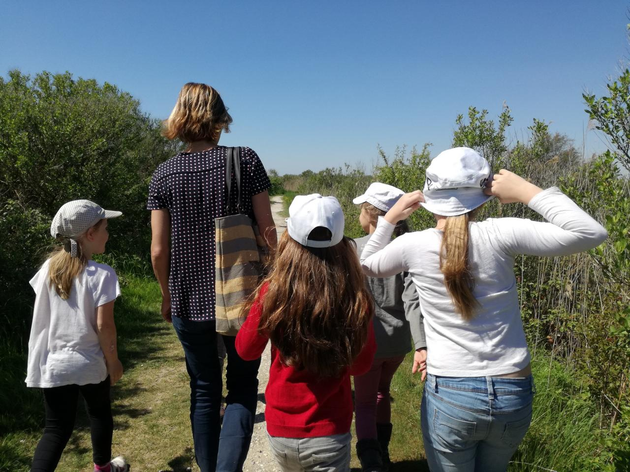 Balades contées de Jessica - Agenda Nature du Teich