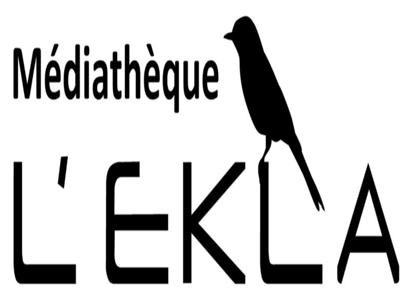 La médiathèque prend l'air - Agenda Animation et fête locale du Teich