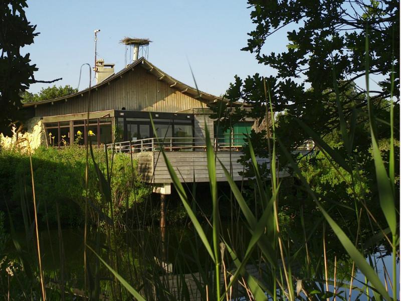 Maison de la Nature du Bassin d'Arcachon - A l'entrée de la Réserve Ornithologique, la MNBA organise, pour vous, activités et visites guidées pour une découverte de la nature en douceur. Louez un canoë et découvrez l'Eyre et son milieu, entre amis ou en famille. En été, partez pour  une balade en barque, accompagnée d'un guide qui vous dévoile les secrets de l'Eyre, son histoire, sa faune, ses hommes… pour une durée de 2h30 à 3h.  Embarquez sur un kayak de mer et ramez jusqu'aux merveilles du Bassin d'Arcachon et du Delta. Visitez aussi la Réserve Ornithologique autrement au cours des sorties guidées avec les « Visiteurs du Soir » en été à la fermeture du Parc, et les « Visiteurs  de printemps, d'été, d'automne ou d'hiver