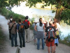 Les visiteurs d'Automne - Agenda Nature Office de Tourisme Le Teich