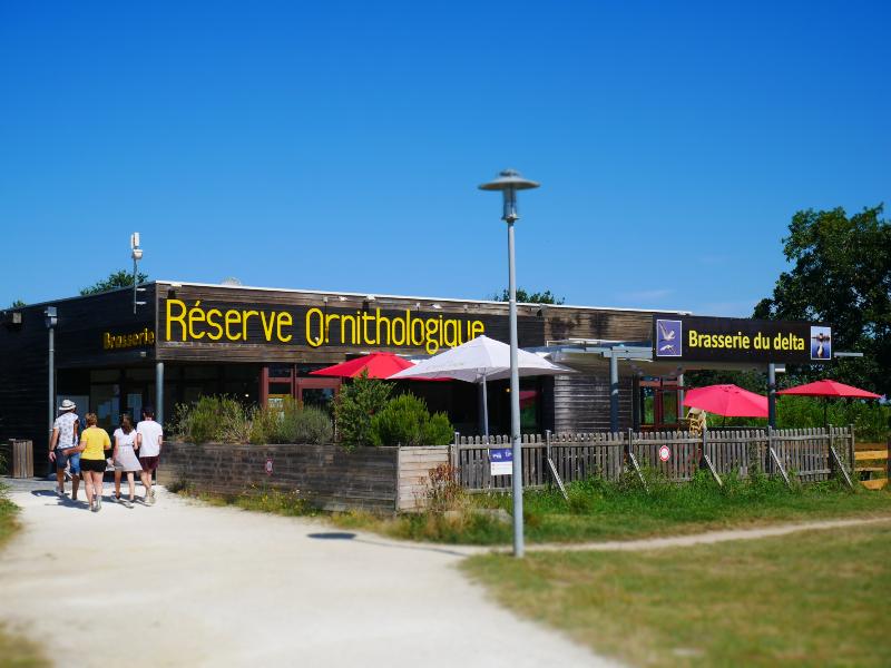 Brasserie du Delta •  Restaurants