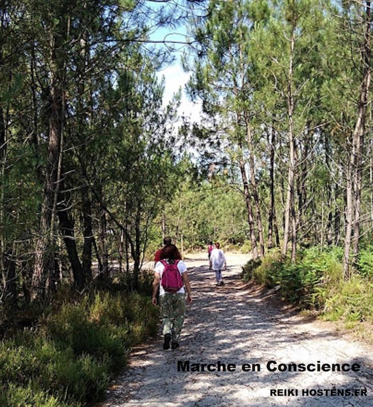Marche en conscience - Agenda Nature du Teich
