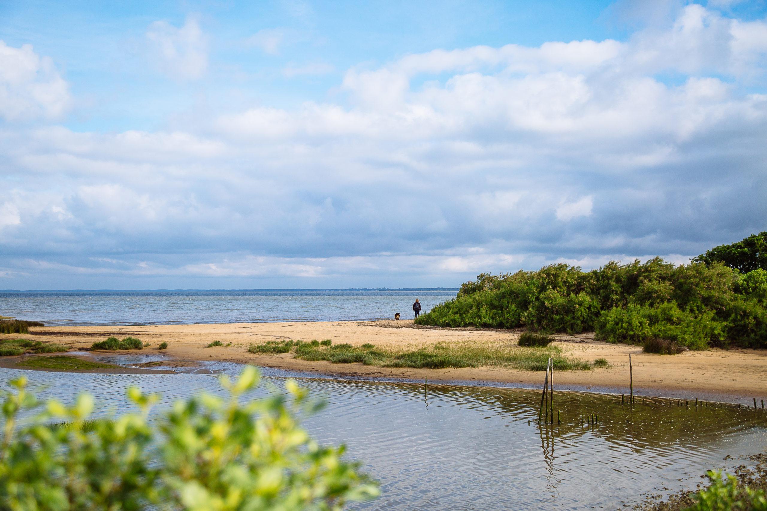 Les trésors de la pointe - Agenda Nature du Teich