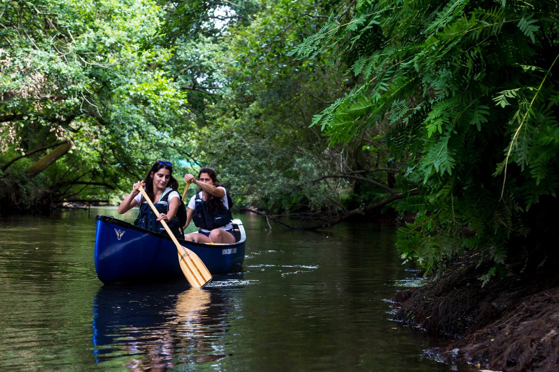 Bains de nature - Agenda Nature du Teich