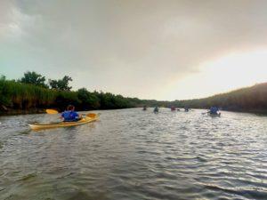 Sortie en kayak de mer jusqu'à la pointe du Teich - Agenda Sports et loisirs Office de Tourisme Le Teich