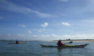 Découverte et initiation au kayak de mer dans le delta du Bassin d'Arcachon - Agenda Sports et loisirs Office de Tourisme Le Teich