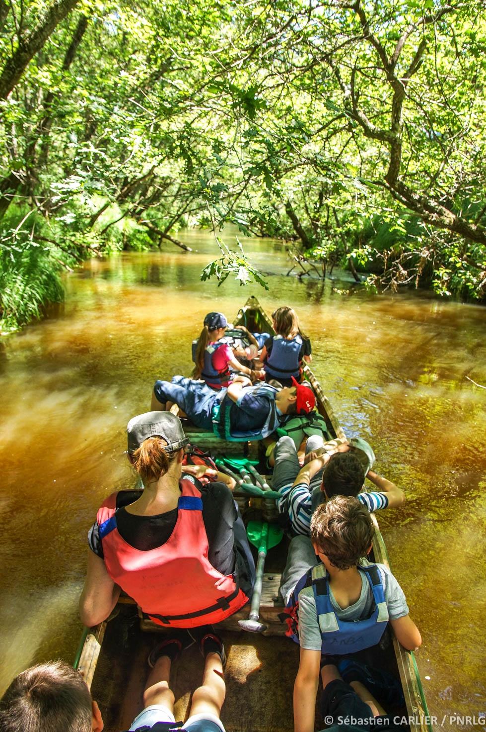 A pied et en canoe : visite guidée du delta autrement - Agenda Sports et loisirs du Teich